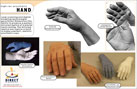 Projects - High-Res Prosthetic Hand